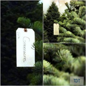 greenacres-estate-los-angeles-christmas-tree